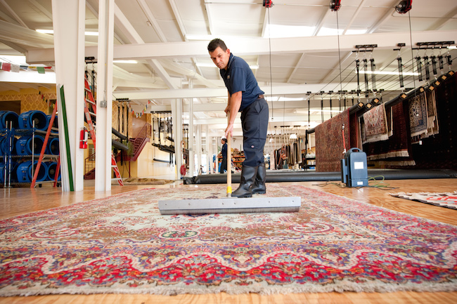 Rug Cleaning Specialist