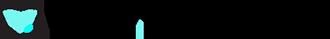 Vault Security, LLC Logo